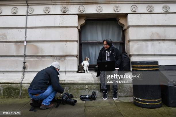 Larry the 10 Downing Street cat sits with press photographers as they work in Downing Street in central London on December 9, 2020. - British Prime...