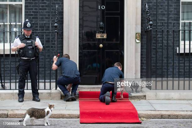 Larry the 10 Downing Street cat watches as workmen install the red carpet next to a police officer outside ahead of the arrival of Russian President...