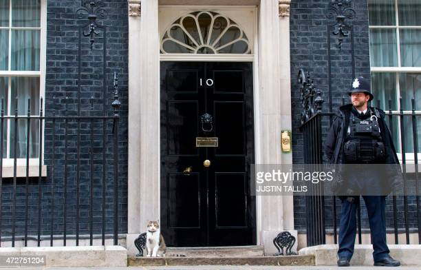 Larry the cat of British Prime Minister David Cameron sits on the step outside 10 Downing Street in London on May 9 2015 Britain awoke to a new...