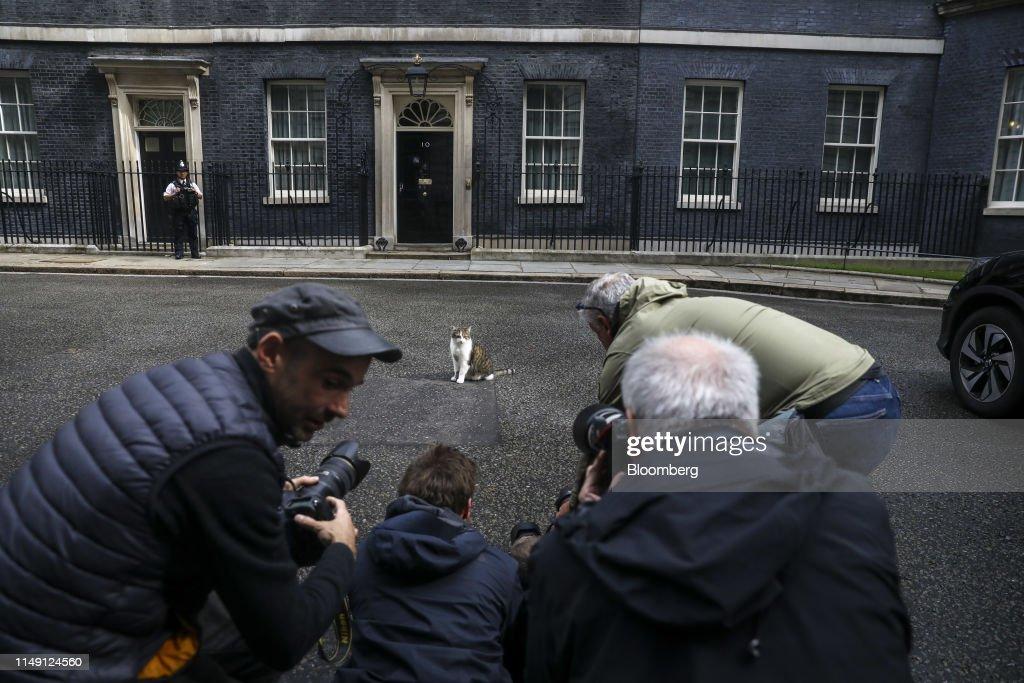 Record Field of Tories Bid to Succeed Theresa May as U.K. Leader : ニュース写真