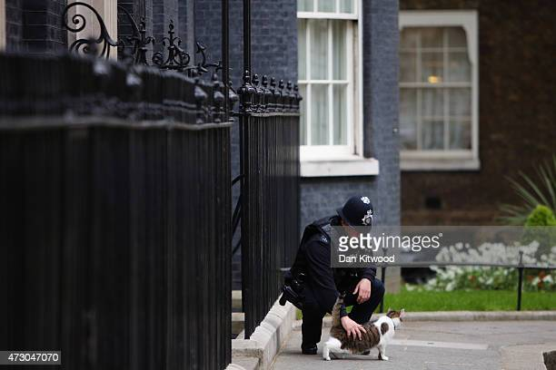 Larry the Downing Street cat is stroked by a police officer during the first weekly cabinet meeting in Downing Street, on May 12, 2015 in London,...