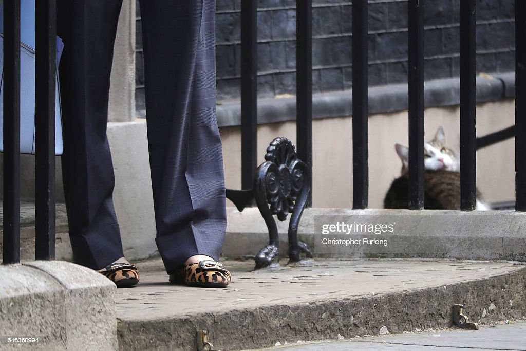 Ministers Attend David Cameron's Last Cabinet Meeting : News Photo