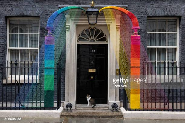 Larry the Downing Street cat sits beneath the Pride Month installation on the doorstep of 10 Downing Street on June 29, 2021 in London, England. The...