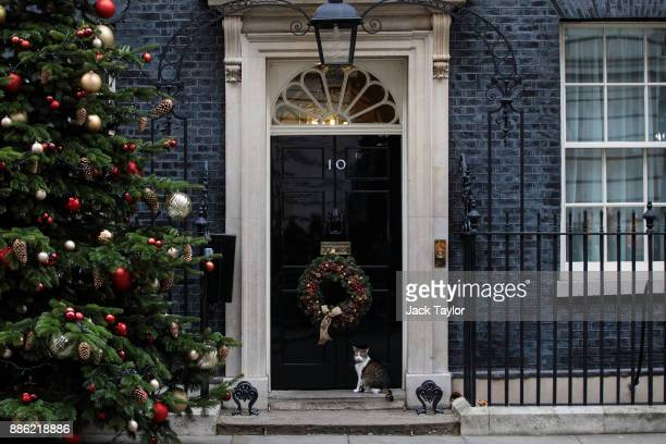 Larry the Downing Street Cat sits on the doorstep of Number 10 during the weekly cabinet meeting at Downing Street on December 5 2017 in London...