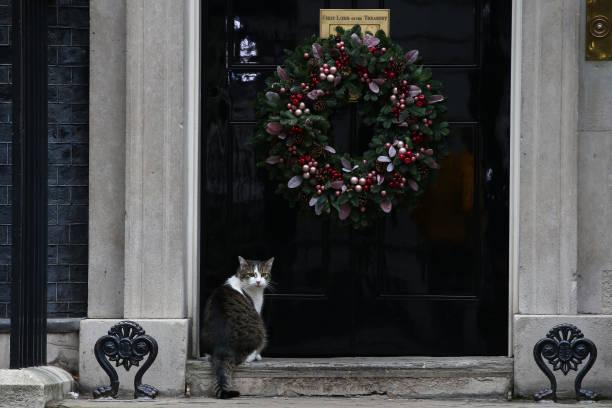 GBR: Downing Street Christmas Tree