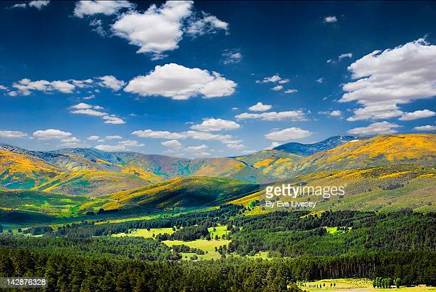 las hurdes mountains in fall color - provinz leon stock-fotos und bilder