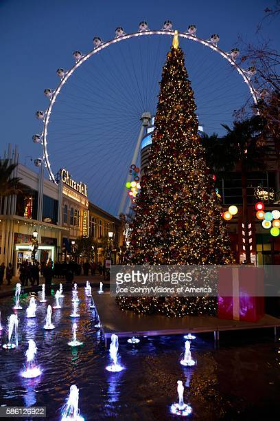 Las Vegas Nevada USA Christmas tree in front of The High Roller Ferris Wheel at dusk off the Strip in Las Vegas Nevada USA