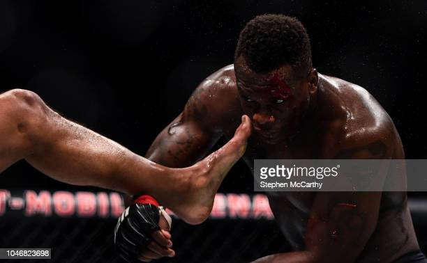 Las Vegas United States 6 October 2018 Ovince Saint Preux during their UFC light heavyweight fight against Dominick Reyes during UFC 229 at TMobile...