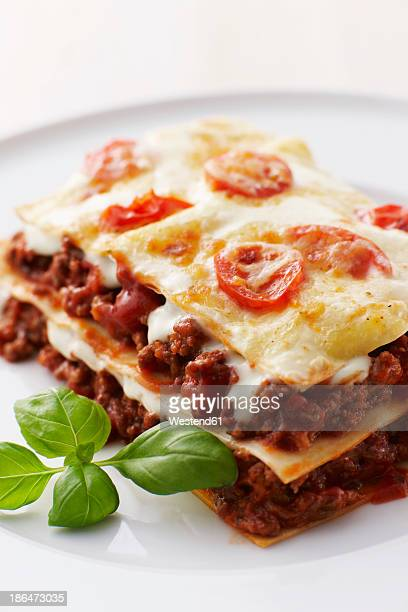 Lasagne on plate, close up