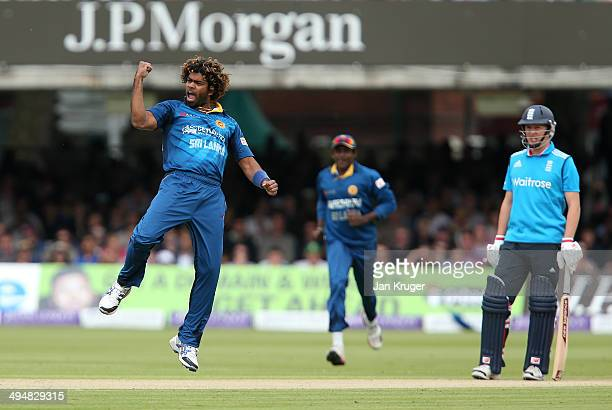 Lasith Malinga of Sri Lanka celebrates the wicket of Ian Bell of England during the 4th Royal London One Day International match between England and...