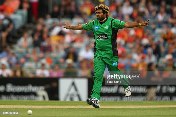 Lasith Malinga of the Stars celebrates the wicket of Marcus North of the Scorchers during the Big Bash League match between the Perth Scorchers and...