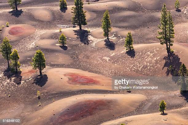 Lassen Volcanic National Park (Painted Dunes)
