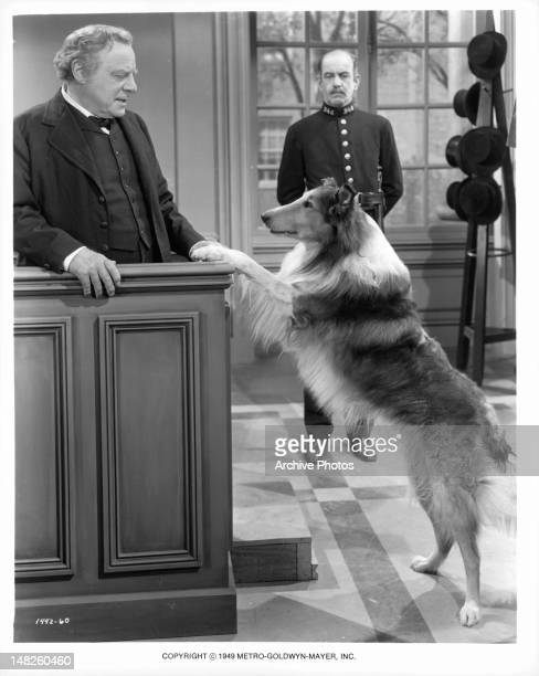 Lassie and Edmund Gwenn go to court in a scene from the film 'Challenge To Lassie' 1949