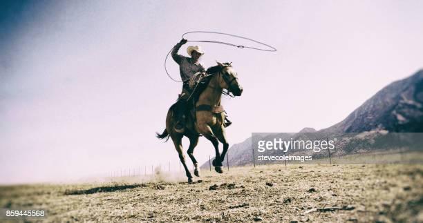 vaquero de lazo - vaqueros fotografías e imágenes de stock