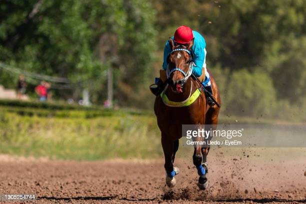 last 200 meters at the mendoza racecourse in what was the first post-pandemic race. - sports race stock pictures, royalty-free photos & images