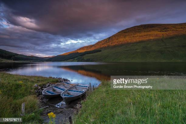 last light in the strath. - brown trout stock pictures, royalty-free photos & images