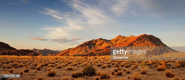última semáforo en depreden formación de roca y bosque de aloe dichotoma - kalahari desert fotografías e imágenes de stock