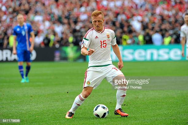 Laszlo KLEINHEISLER of Hungary during the UEFA EURO 2016 Group F match between Iceland and Hungary at Stade Velodrome on June 18 2016 in Marseille...
