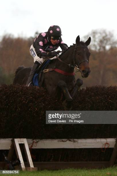 Latanier ridden by Aidan Coleman during The Oldfield Beginners Steeple Chase