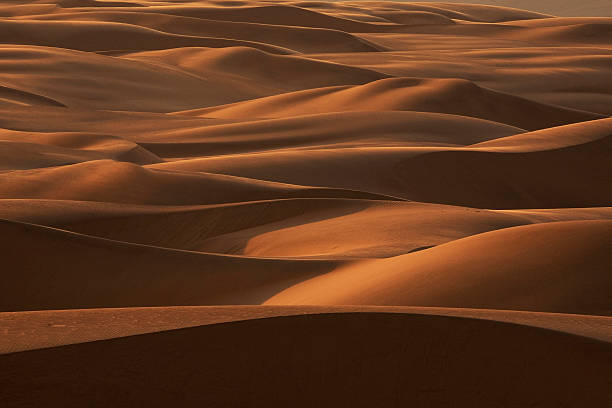 Late afternoon light on the sand dunes stretching the entire length of Namibia's coast in a band up to 185 miles wide. Dunes sometimes reach 1,000 ft.
