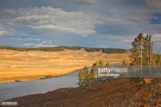late afternoon on yellowstone river, wyoming, usa - golden hour stock pictures, royalty-free photos & images