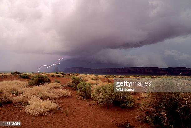 Late afternoon scenic with oblique cloud-to-ground lightning discharge, Scud clouds with ragged bottom are indicative of violent storm, Plants in...