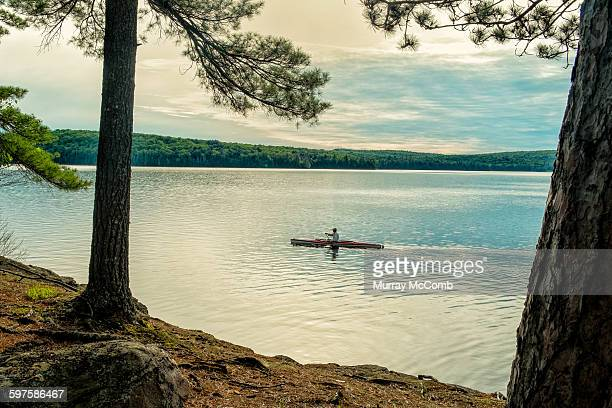 late day paddle in wilderness setting - murray mccomb stock pictures, royalty-free photos & images