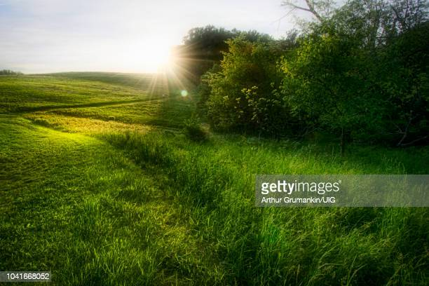 late day sunburst, hill and meadow - arthur stock pictures, royalty-free photos & images