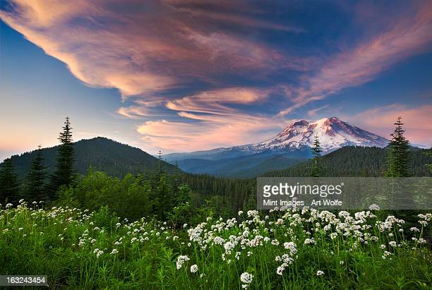 Late evening clouds over the peak of Mouth Rainier in Mount Rainier national park.