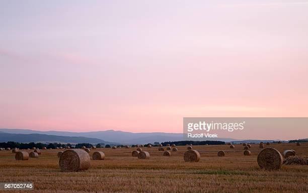 Late evening hay bale landscape