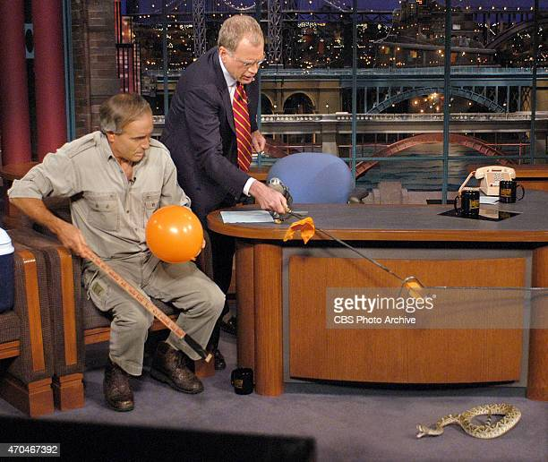 Late Show guest Jack Hanna Director Emeritus of the Columbus Zoo jumps up in his chair as a Western diamondback rattlesnake moves his way after...