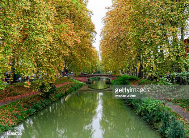 late spring look on canal du midi canal in toulouse,france - canal du midi photos et images de collection