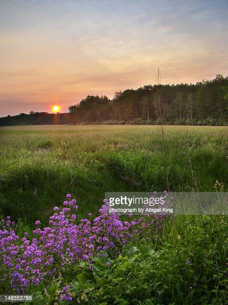 late spring sunset - midland michigan stock pictures, royalty-free photos & images