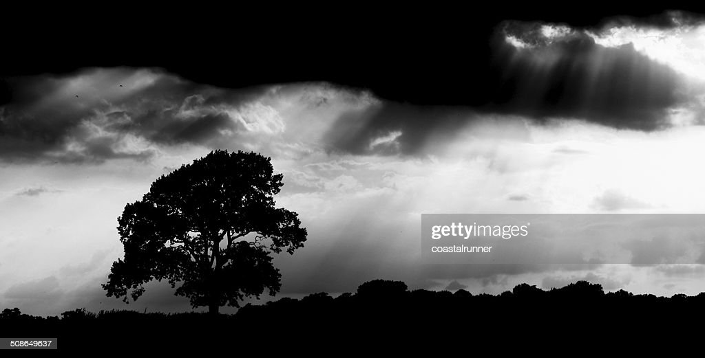 Late summer storm clouds : Stock Photo