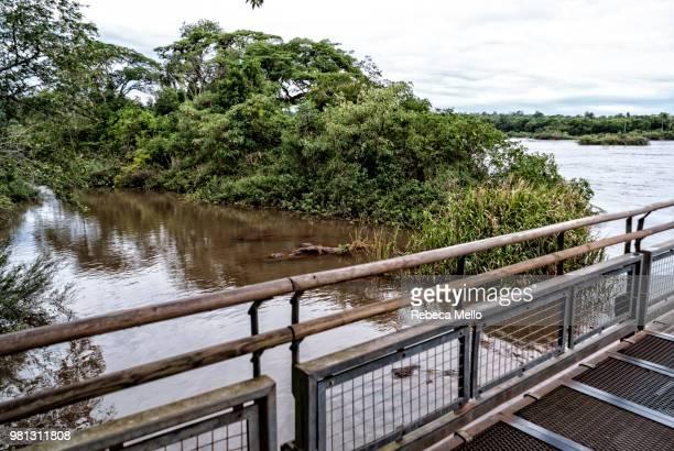lateral view of  footbridge over iguazu river - vista lateral bildbanksfoton och bilder