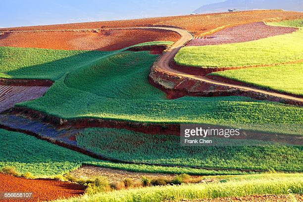 Laterite plateau in Yunnan