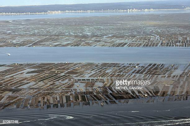 Photo aerienne prise le 14 mars 2006 des parcs a huitres au Cap Ferret Gironde sur la cote atlantique a maree basse Le Syndicat Mixte du Bassin...