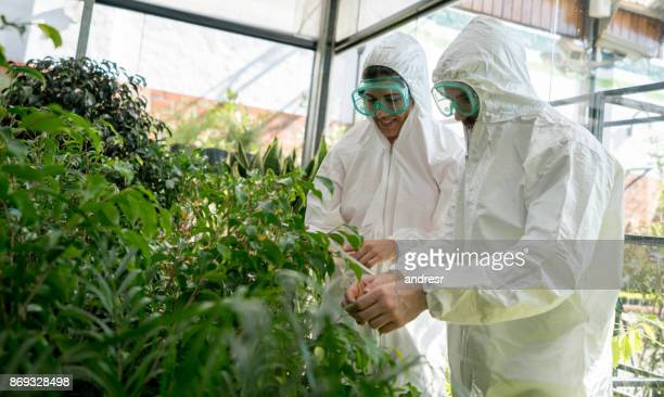 Latin american botanists studying plants at a greenhouse smiling