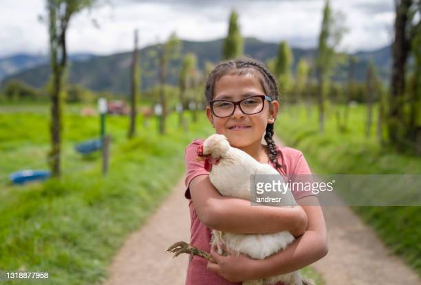 latin american girl holding a chicken at a farm - south america stock pictures, royalty-free photos & images