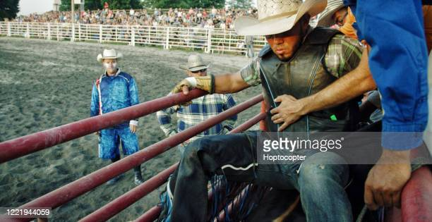 a latino bull rider wearing a protective safety vest sits on top of a bull in a pen before competing in a bull riding event - bull riding stock pictures, royalty-free photos & images