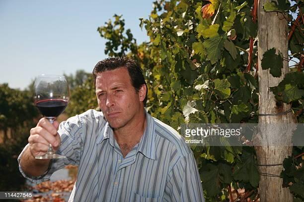 Latino Winemaker
