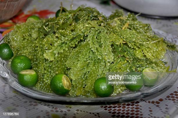 Lato (seaweed) salad with calamansi - caulerpa rac