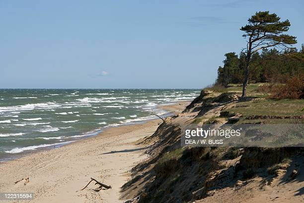 Latvia Courland Region Beach on Baltic Sea shore nearby Ventspils