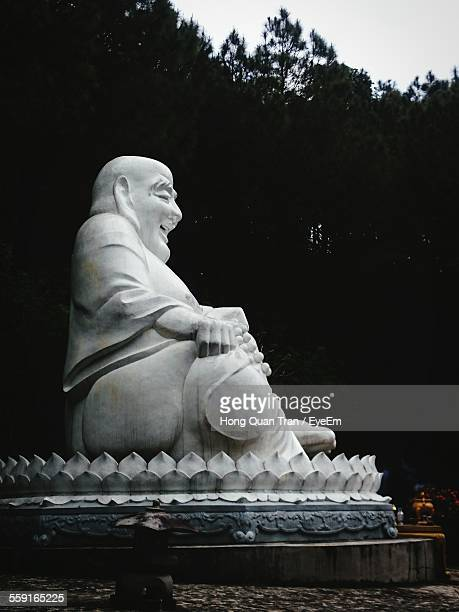 laughing buddha against trees in garden - hong quan stock pictures, royalty-free photos & images