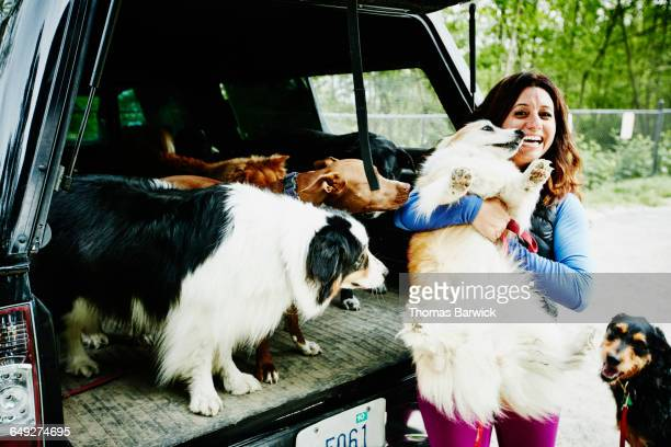 Laughing dog walker lifting dog into back of truck