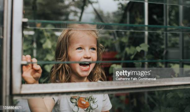 laughing girl looks at something through a slotted glass greenhouse window - open stock pictures, royalty-free photos & images