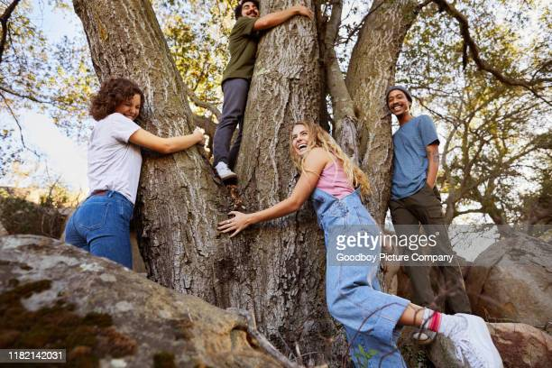 laughing group of diverse friends hugging a tree together outdoors - environmentalist stock pictures, royalty-free photos & images