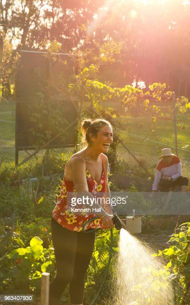 laughing heavily back lit model watering garden with a hose. a colleague is seen in the background shade - thisisaustralia stock pictures, royalty-free photos & images