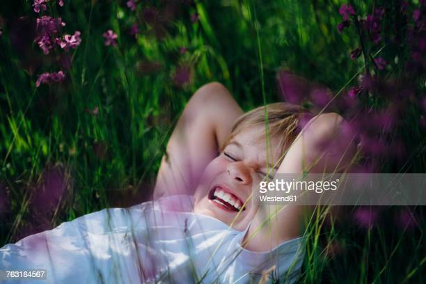 Laughing little boy lying on meadow in the garden