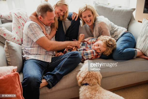 laughing with family - one animal stock pictures, royalty-free photos & images